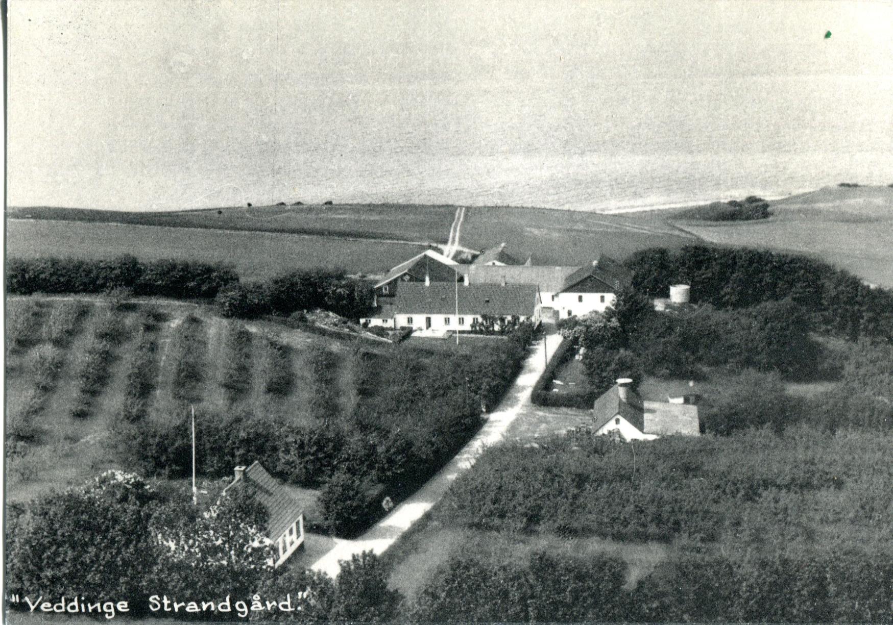 Strandgaarden2